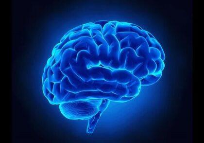 تقویت حافظه با مشاوران برتر